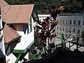 Casa de Santos Dumond - Projeto Arquitetônico de um aviador.jpg