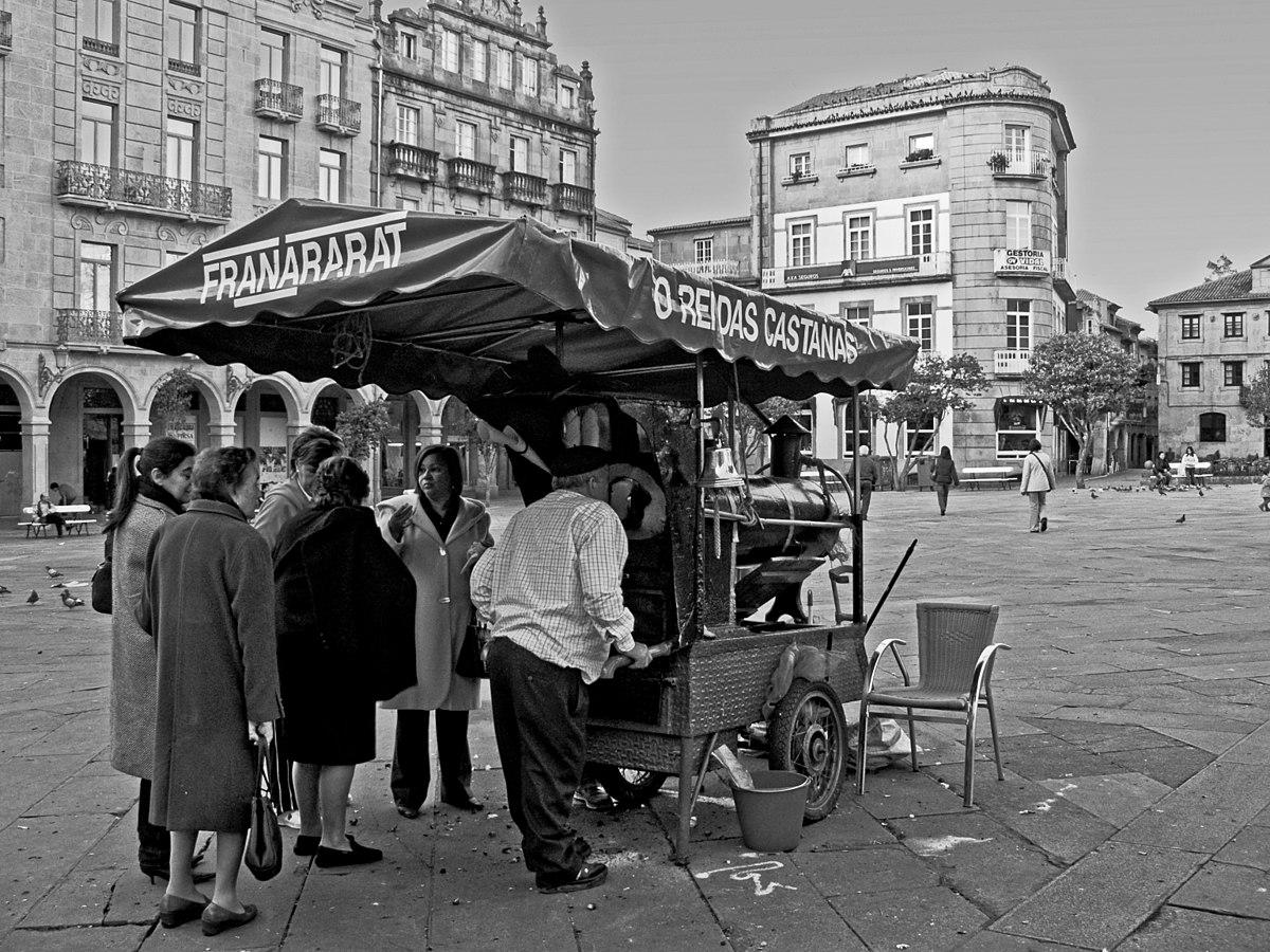 Castañeiro, praza da Herrería, Pontevedra.jpg