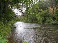 Catawissa Creek.JPG
