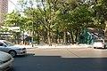 Catedral, Asuncion, Paraguay - panoramio (77).jpg