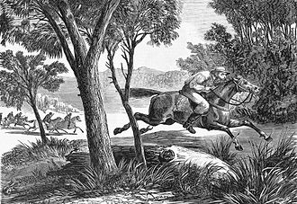 Dan Morgan (bushranger) - Troopers chasing Morgan
