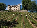 Chateau Lagrezette 46140 CAILLAC Vignoble du Cahors (Lot) 1.jpg