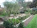 Chelsea Physic Garden, Fortune's Tank Pond - geograph.org.uk - 1808606.jpg