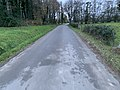 Chemin Rollière - Crottet (FR01) - 2020-12-03 - 2.jpg