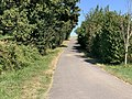 Chemin Rougemont Bey Ain 1.jpg