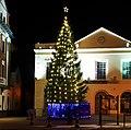 Christmas Tree, Bangor - geograph.org.uk - 2191734.jpg