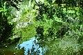 Claude Monet Times (44096454).jpeg