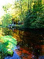 Colors As The River Spey, Maybe We Start A Distillery - panoramio.jpg