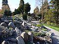 Copenhagen Botanical Garden - scenery.jpg