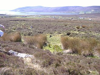 Carrowmore Lake - Image: Copy of standingstonesmuinge rroon 6may 08 023