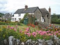 Cottage garden, Yarcombe - geograph.org.uk - 1418151.jpg
