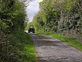 Country lane at Drumroosk South - geograph.org.uk - 1308934.jpg