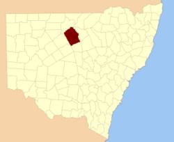 Cowper NSW