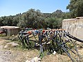 Crete- water meters for olive tree irrigation2.jpeg