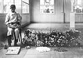 Cria gusano seda 1919.jpg