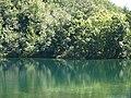 Croatia P8144718 (3938364561).jpg