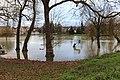 Crue Marne près Pont Europe Ferté Jouarre 7.jpg