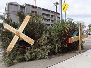 Kerbside collection - Discarded Christmas trees awaiting pickup in the San Fernando Valley