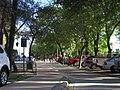 Curico, alameda (14958492623).jpg