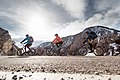 Cyclists in Yellowstone National Park (2101172f-d627-47e1-9709-7095451fcf40).jpg