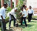 D.V. Sadananda Gowda planting a sapling at the new office campus of the National Sample Survey Office (NSSO), Ministry of Statistics & Programme Implementation, in Shahdara, Delhi.jpg