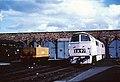D1048 Western Lady Crewe Works.jpg