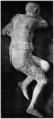 D486-cadavre d'homme trouvé a pompéi-Liv2-ch10.png