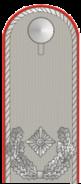 DH251-Major
