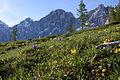 Dachstein südwand2140.JPG