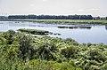 Daugava - panoramio (59).jpg