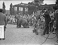 De dieren in Artis voor de televisie, Bestanddeelnr 907-3151.jpg