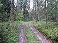 Degučių sen., Lithuania - panoramio (216).jpg