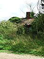 Dilapidated cottage - geograph.org.uk - 916593.jpg