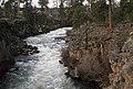 Dillon Falls Deschutes River, Deschutes National Forest (36951144541).jpg