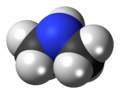 Dimethylamine 3D spacefill.png