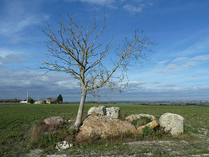English:  Dolmen du Griffier, Antoigné, Maine-et-Loire, Pays de la Loire, France.