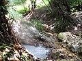 Dominica IMG 4806.jpg