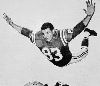 Don Joyce (American football) American football player, wrestler