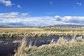 Douglas County - panoramio (61).jpg