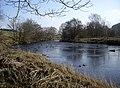 Downstream River Deveron - geograph.org.uk - 1212047.jpg