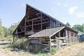 Dr. Pierce Barn Demolition-3.jpg