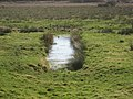 Drainage ditch on Weston Moor - geograph.org.uk - 1186744.jpg