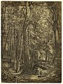 Drawing, In the Woods, study for painting, June Woods, New York Historical Society, on loan from the New York Public Library, 1864 (CH 18396363).jpg