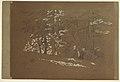Drawing, Trees, Berchtesgaden, Bavaria, 1868 (CH 18199271).jpg