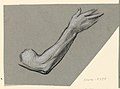 Drawing, detail of an arm, ca. 1885 (CH 18404369).jpg