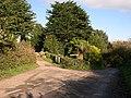 Driveway near Milcombe - geograph.org.uk - 404018.jpg