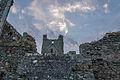 Dunbrody Abbey 4.jpg