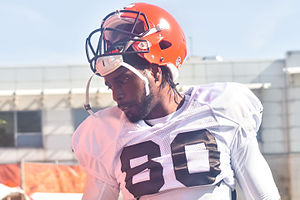 Dwayne Bowe - Bowe with the Cleveland Browns in 2015