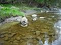 Eaton river - panoramio - Mario Hains.jpg