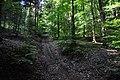 Eglisau - Rhinsberg, spätbronzezeitliche Höhensiedlung - neuzeitliche Hochwacht 2011-09-21 13-21-38.jpg